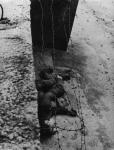 Berlin Wall 24